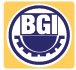 BGI Engineering Sdn Bhd