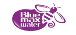 Blue Max Marketing