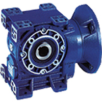 Helical Worm Gear