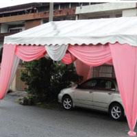 Canopy 20 X 16