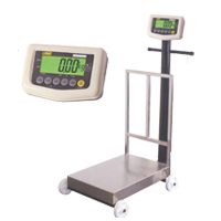 ATM Series M.S. 24 Inch X 17 Inch Platform Scale With Wheels
