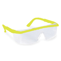 Clear Safety Sunglasses