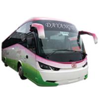 COACH 44 / 45 Seater & 31 Seater SUPER VIP Rental