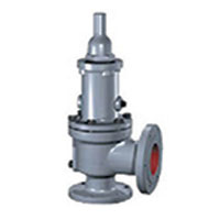CONSOLIDATED  Safety Valve