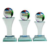 Crystal Glass Award ( 8110 )