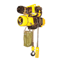 Electric Chain Hoist (IRS Inverter)