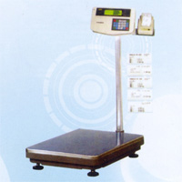 Electric Platform Scale