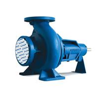 EUROFLO End Suction Surface Pumps