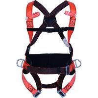Full Body Harness Delta Plus