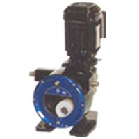Graco Hose / Peristaltic Pump