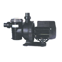 Grundfos Swimming Pool Pump