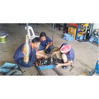 Hoist Repairing Service