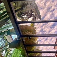 Metal Canopy With Polycarbonate