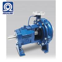REGALINE Process Pump RDP Series