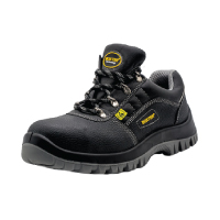 Rogers Safety Shoe
