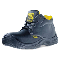 Safety Shoes YCL 99