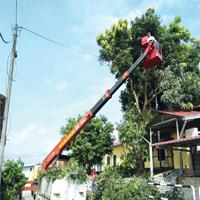 Skylift Rental 24 Meter, Pontong Pokok