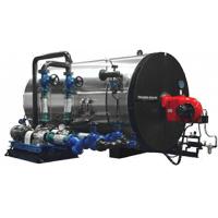 Taijune Boiler - Thermal Oil Heater