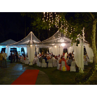 Transparent Canopies For Weddings