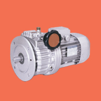 V Series Planetary Variable Speed Gearmotor